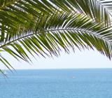 Préparez vos vacances à Sète