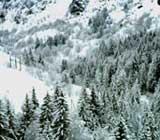 Week-end au ski pas cher